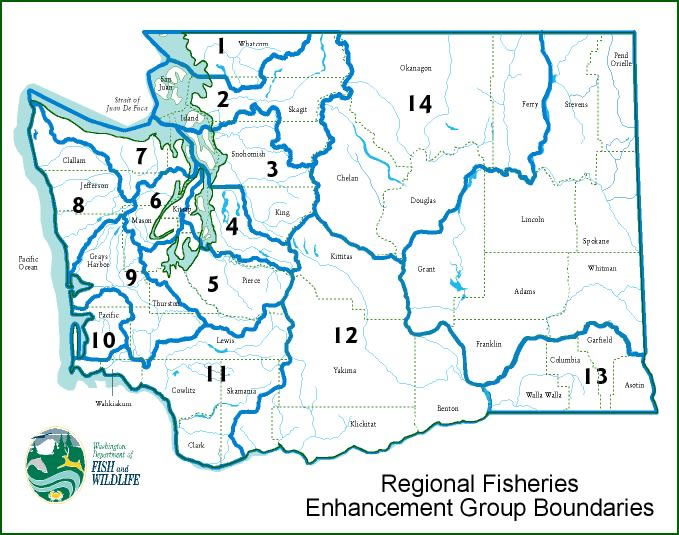 Mid sound fisheries enhancement group us for Wa fishing license cost